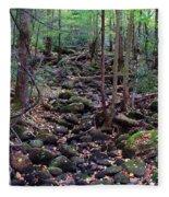 Dry River Bed- Autumn Fleece Blanket