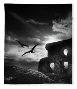 Dryslwyn Castle 3b Fleece Blanket