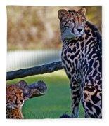 Dubbo Zoo Queen - King Cheetah And Cub Fleece Blanket