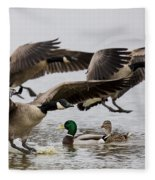 Duck Ducks Fleece Blanket