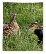 Duck Meeting At Frankenmuth Fleece Blanket