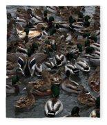 Duck Soup Fleece Blanket