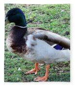 Duck - Standing Fleece Blanket