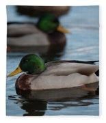 Duck Trio Fleece Blanket
