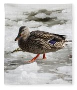 Duck Walking On Thin Ice Fleece Blanket