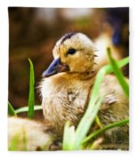 Duckling Fleece Blanket