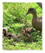 Ducklings Through The Ferns Fleece Blanket