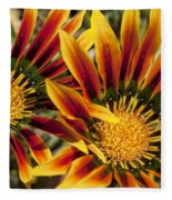 Dueling Gerberas Fleece Blanket