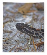 Dusky Pygmy Rattlesnake Fleece Blanket