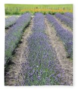 Dutch Lavender Field Fleece Blanket