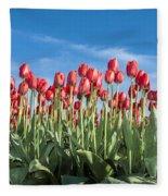 Dutch Tulips Second Shoot Of 2015 Part 10 Fleece Blanket
