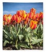 Dutch Tulips Second Shoot Of 2015 Part 3 Fleece Blanket