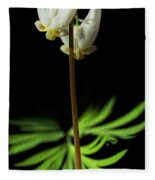 Dutchman's Breeches Narrow Format Fleece Blanket