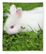 Dwarf White Bunny Spring Scene Fleece Blanket