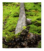 Dying Tree In The Forest Fleece Blanket
