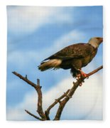 Eagle And Blue Sky Fleece Blanket