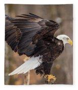 Eagle Landing On Perch Fleece Blanket