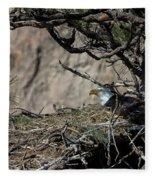 Eagle On The Nest, No. 3 Fleece Blanket
