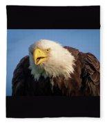 Eagle Stare 2 Fleece Blanket
