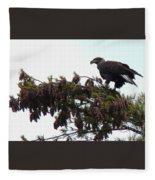 Eaglet In Pines Fleece Blanket