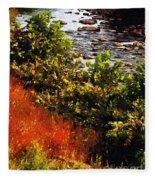 Early Autumn Along The Naugatuck Fleece Blanket