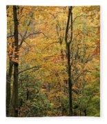 Early Autumn Fleece Blanket