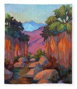Early Morning At Indian Canyon Fleece Blanket