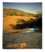 Early Morning Pond Fleece Blanket