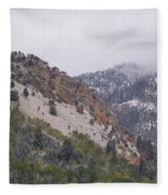 Early Snows Fleece Blanket