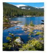 Early Summer At Finch Lake Fleece Blanket