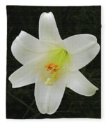 Easter Lily With Black Background Fleece Blanket