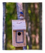 Eastern Bluebird Perched On Birdhouse 4 Fleece Blanket