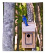 Eastern Bluebird Perched On Birdhouse Fleece Blanket
