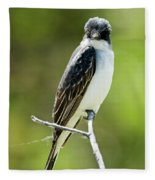 Eastern Kingbird Stare Fleece Blanket