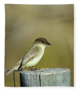 Eastern Phoebe At Falcon State Park Of Texas Fleece Blanket