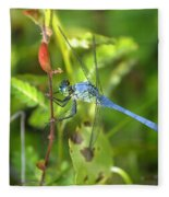 Eastern Pondhawk Dragonfly Fleece Blanket