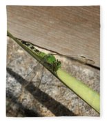 Eastern Pondhawk On A Leaf Fleece Blanket