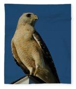 Eastern Red Shouldered Hawk Fleece Blanket