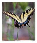 Eastern Tiger Swallowtail Butterfly In Garden 2016 Fleece Blanket