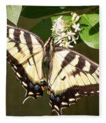 Eastern Tiger Swallowtail  Butterfly Wingspan Fleece Blanket