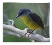 Eastern Yellow Robin Fleece Blanket