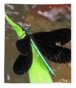 Ebony Jewel Damselfly Fleece Blanket