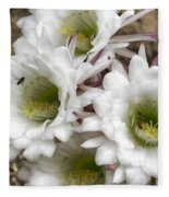 Echinopsis Blossoms  Fleece Blanket