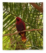 Eclectus Parrot 2 Fleece Blanket