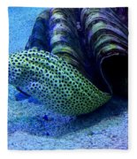 Eels Fleece Blanket
