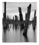 Eerie Lake Fleece Blanket