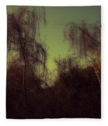 Eery Park Fleece Blanket