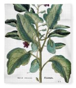 Eggplant, 1735 Fleece Blanket