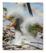 Egret Chicks In Nest With Egg Fleece Blanket