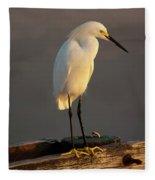 Egret Glow Fleece Blanket